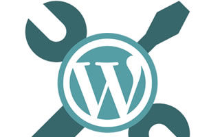 Soporte hosting WordPress