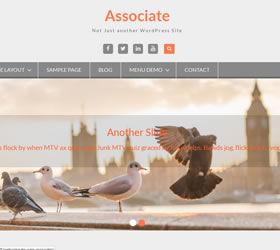 wen-associate