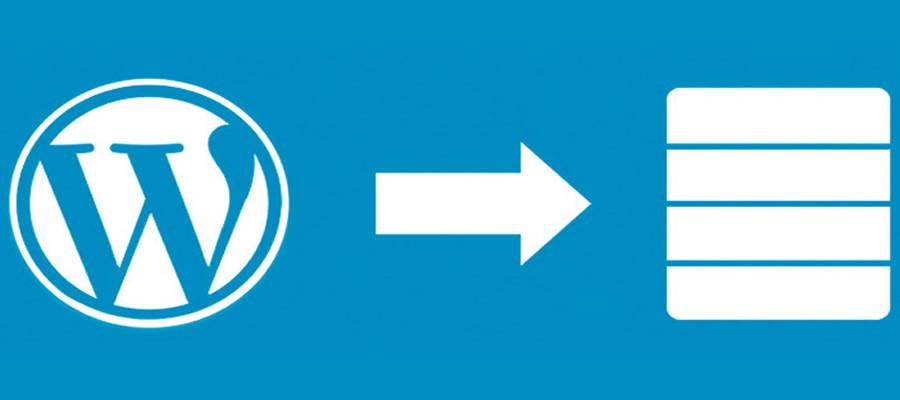 7 características esenciales para un Hosting WordPress